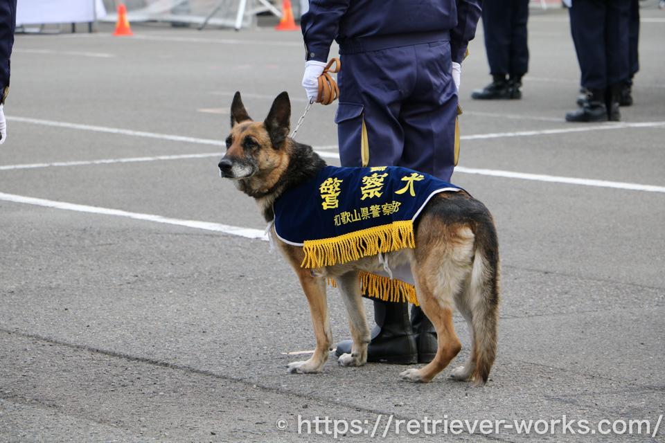 嘱託警察犬