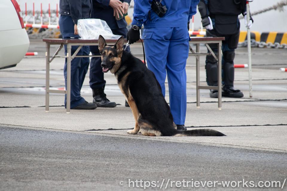 直轄警察犬